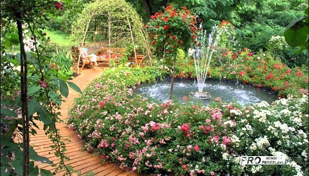 Как сделать сад красивым фото