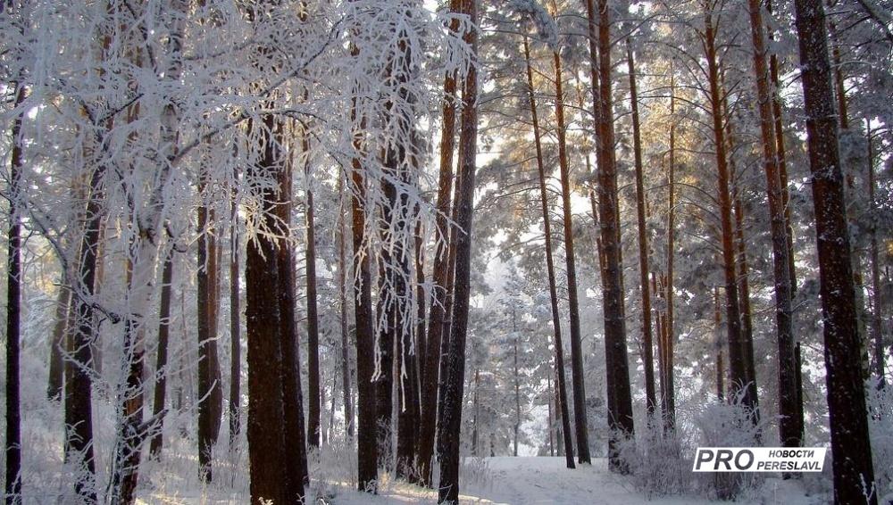 Погода в селе северное черноморского района